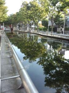 青葉公園池圧縮