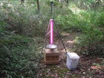 ボックス法による昆虫の採取